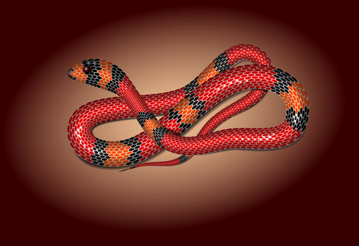 Create a Vector Snake Using Mesh Tormentor in Adobe Illustrator - cssauthor.com