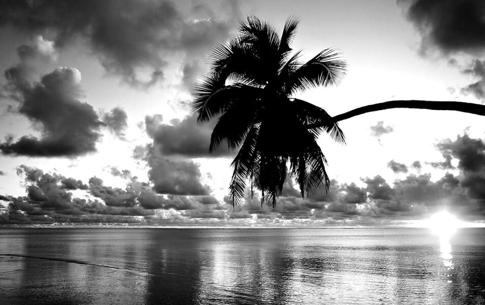 25 Best Monochromatic Black And White Photography