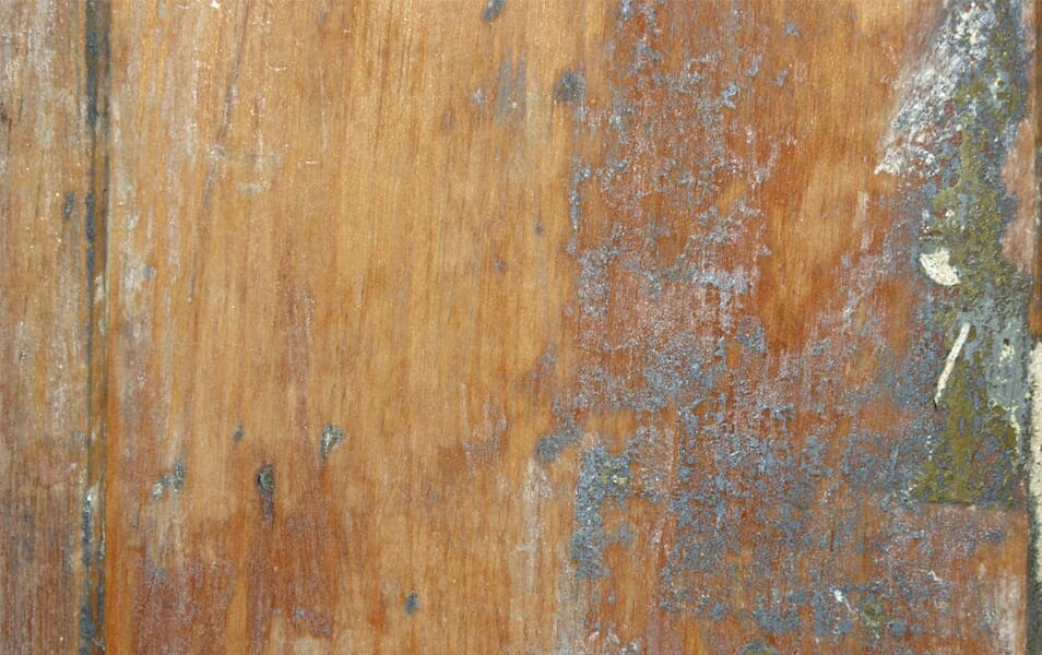 Wood Texture – Old Door