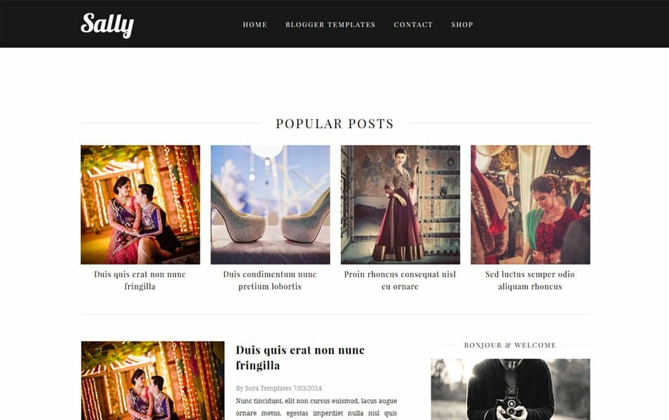 Sally Responsive Blogger Template