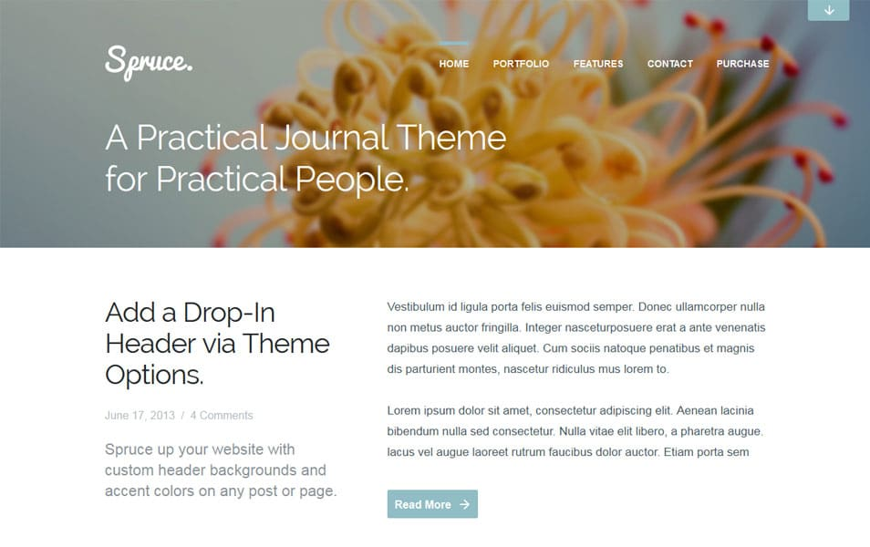 Spruce | A Refreshing Journal & Portfolio Theme