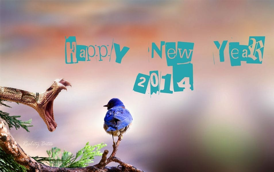 new year 2014 greetings hd wallpaper