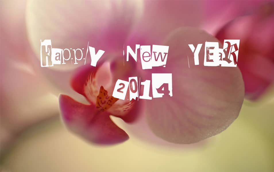 Pink Roses New Year 2014 HD Wallpaper