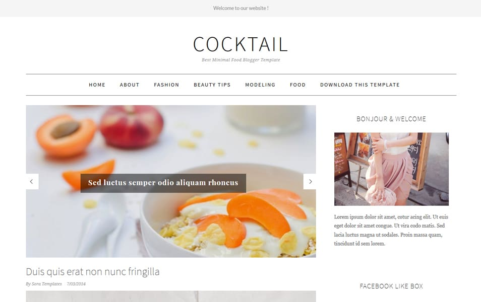 CockTail Minimal Food Blogger Template