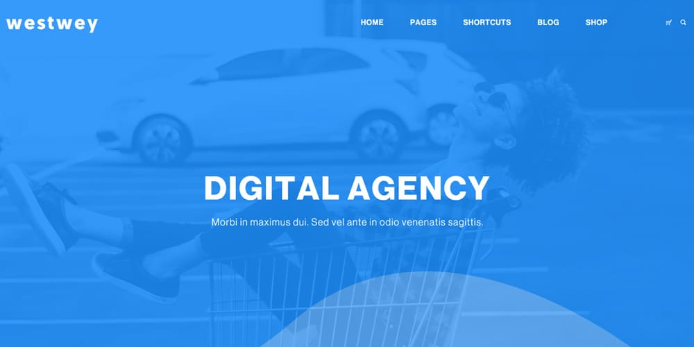 Westwey Agency Web Template PSD