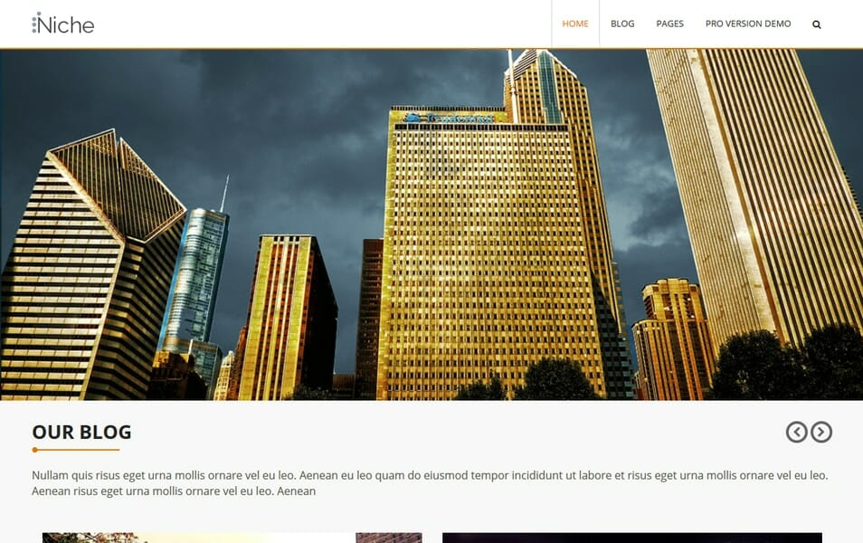 Niche Responsive WordPress Theme