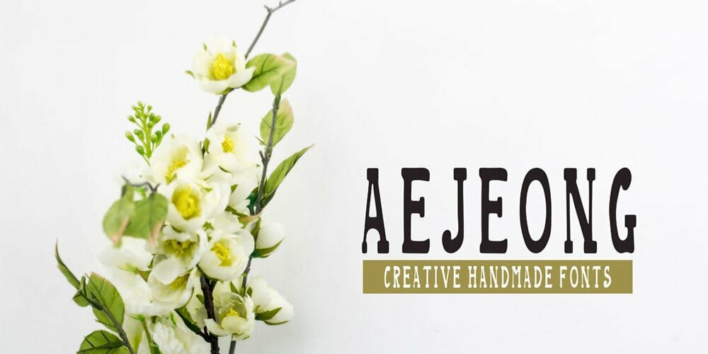 Aejeong Hand Made Font