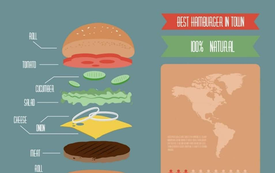 Colorful infographic of hamburger