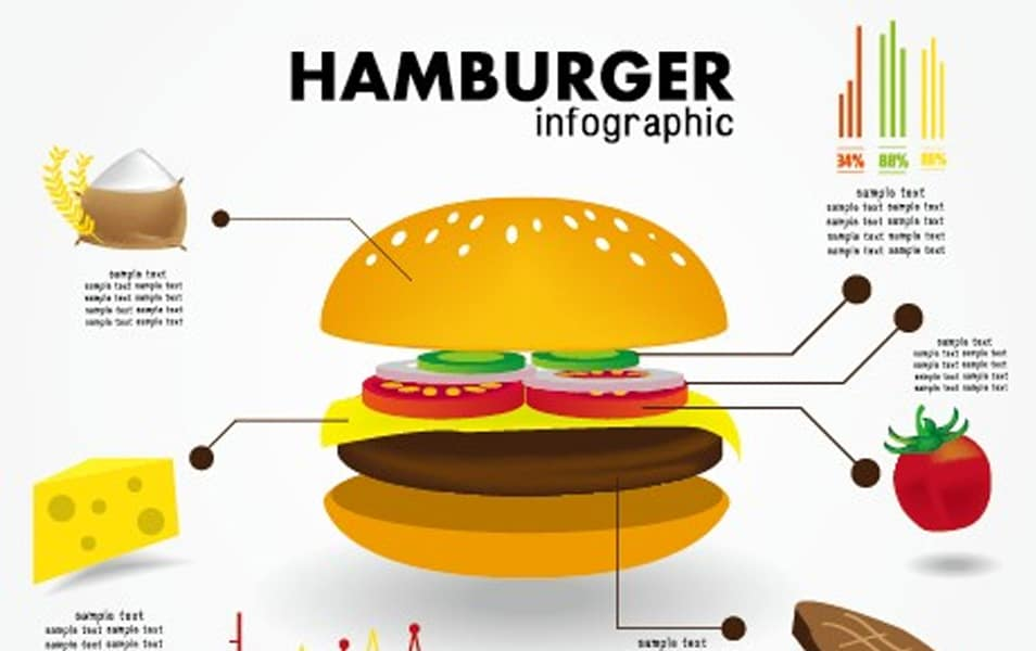 Food infographics elements vector