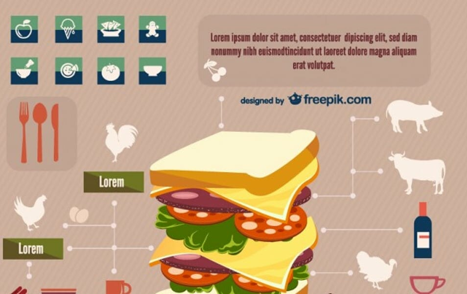 Sandwich infographic