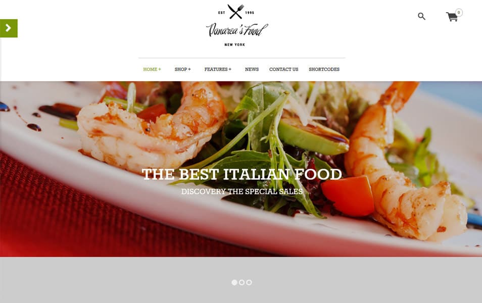 Panarea Responsive WordPress Theme