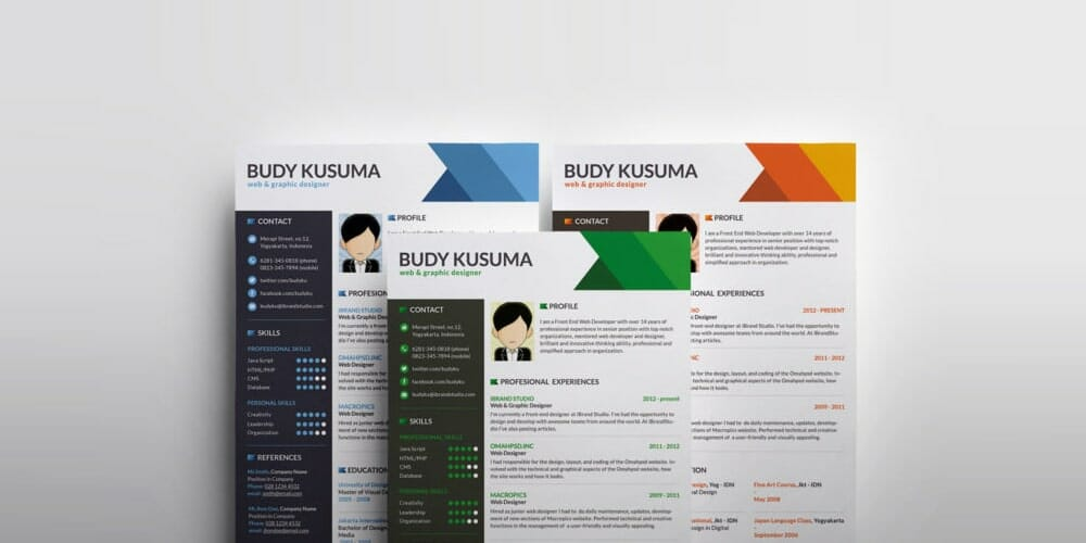 Flasher Resume Template PSD