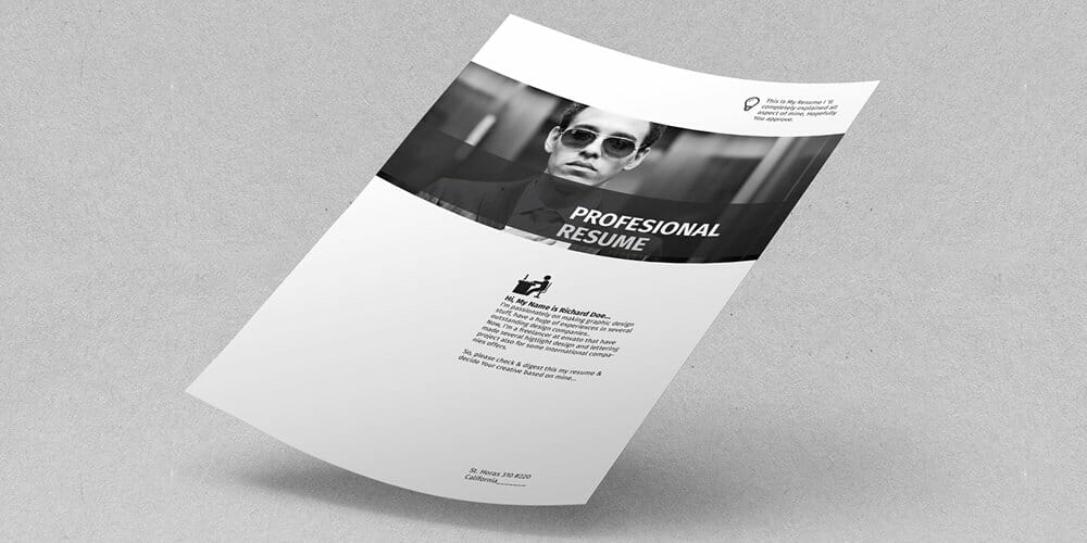 Free Profesional Resume Template