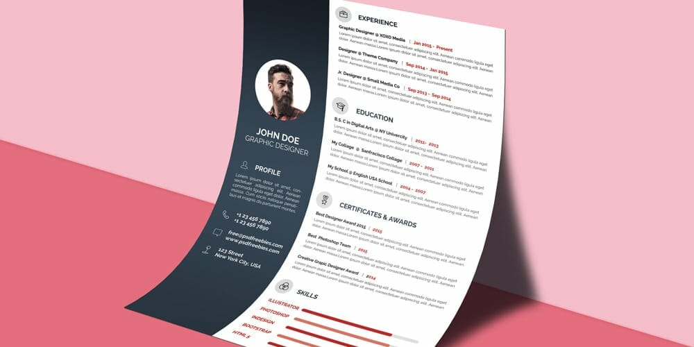 Free Professional CV/Resume Template PSD
