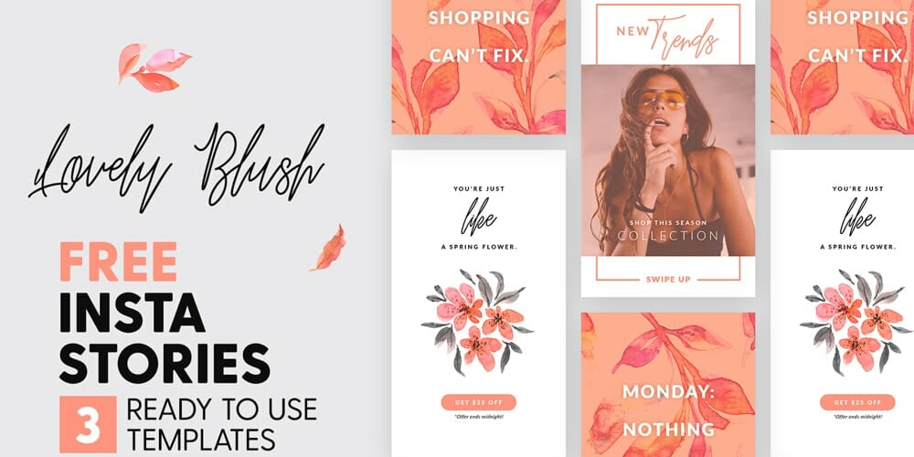 Free Lovely Blush Instagram Stories Templates PSD