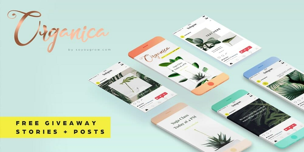 Organica Instagram Stories Templates PSD